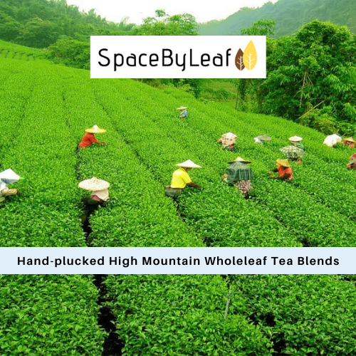 High Mountain Tea